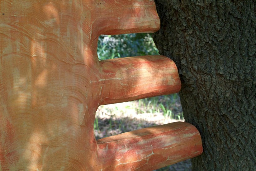 Tree Comb